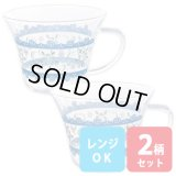 耐熱ガラス マグカップ 2色組 セット 北欧風 小花柄 広口マグ 食べマグ スープカップ【ネコポス不可】